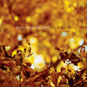 Fell & Found Small Brown Bike