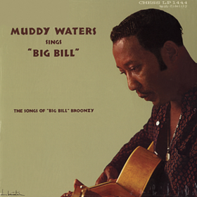 Sings Big Bill Broonzy Muddy Waters