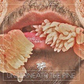 Underneath The Pine Toro Y Moi