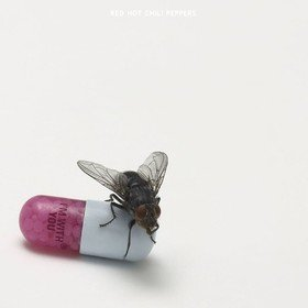 I'm With You Red Hot Chili Peppers