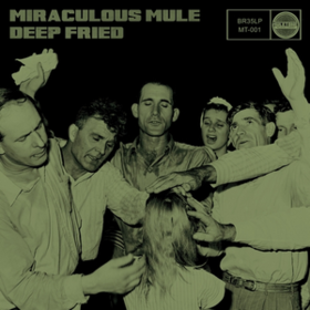 Deep Fried Miraculous Mule