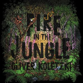 Fire In The Jungle Oliver Koletzki