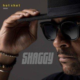 Hot Shot 2020 Shaggy