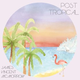 Post Tropical James Vincent Mcmorrow