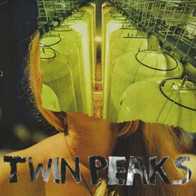 Sunken Twin Peaks