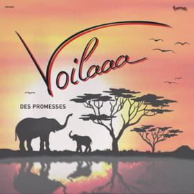Des Promesses Voilaaa