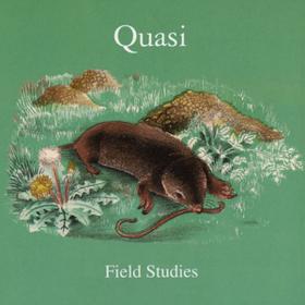 Field Studies Quasi
