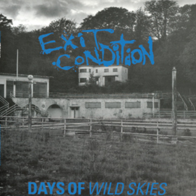 Days Of Wild Skies Exit Condition
