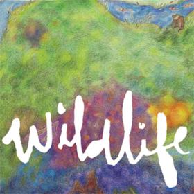 Wildlife Headlights