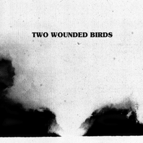 Two Wounded Birds Two Wounded Birds