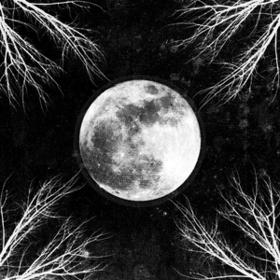 Pale Moon Corpus Christii