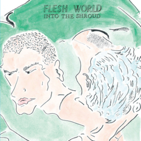 Into The Shroud Flesh World