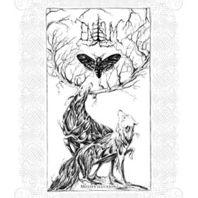Moth's Illusion Enisum