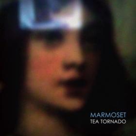 Tea Tornado Marmoset