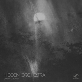 Dawn Chorus Hidden Orchestra
