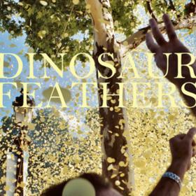 Whistle Tips Dinosaur Feathers