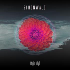 Night Idyll Schonwald