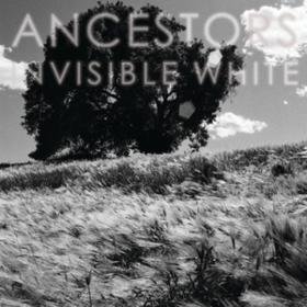 Invisible White Ancestors