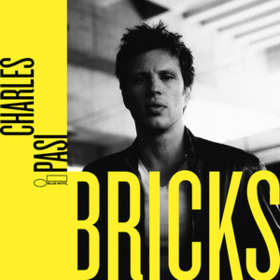 Bricks Charles Pasi