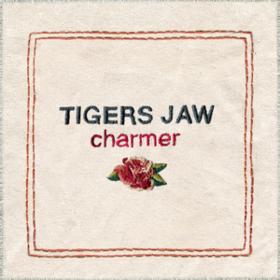Charmer Tigers Jaw