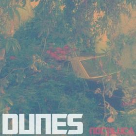 Noctiluca Dunes