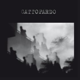 Gattopardo Gattopardo