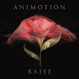 Raise Your Expectations Animotion