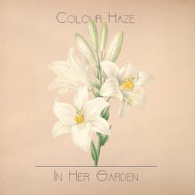 In Her Garden Colour Haze