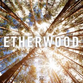 Etherwood Etherwood