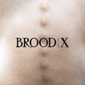Brood X Boss Hog
