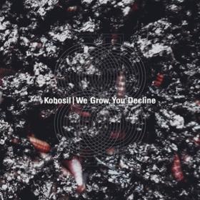 We Grow, You Decline Kobosil