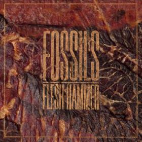 Flesh Hammer Fossils
