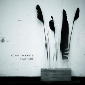 Feathers Poppy Ackroyd