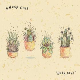 Body Feel Shook Ones