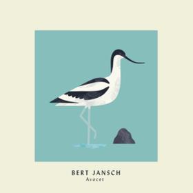Avocet Bert Jansch