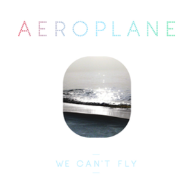 We Can't Fly Aeroplane