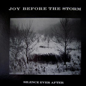 Silence Ever After Joy Before The Storm