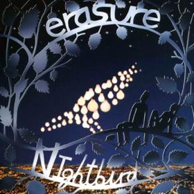Nightbird Erasure