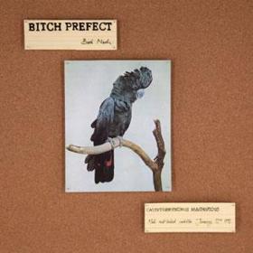 Bird Nerds Bitch Prefect