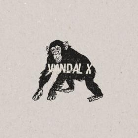 Vandal X Vandal X
