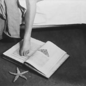 L'etoile De Mer Christina Carter