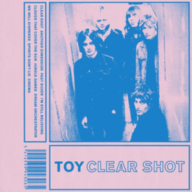 Clear Shot Toy