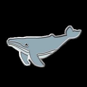 Sea Whale PICO Pins