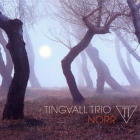Norr Tingvall Trio