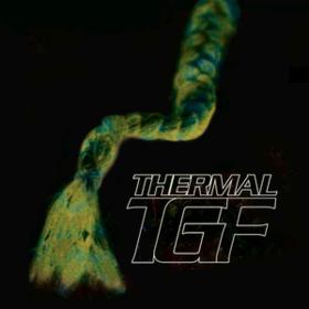 Thermal Teengirl Fantasy