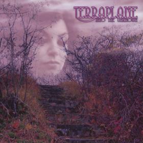 Into The Unknown Terraplane