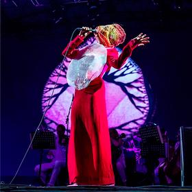 Vulnicura Live Bjork