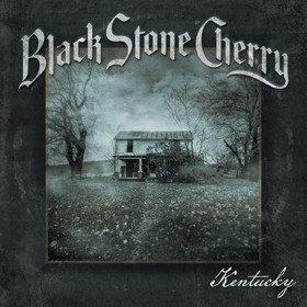 Kentucky Black Stone Cherry