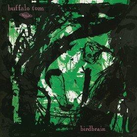 Birdbrain Buffalo Tom