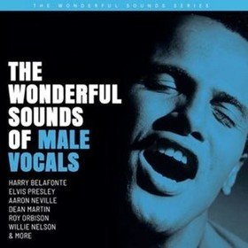 Wonderful Sound Of Male Vocals Various Artists